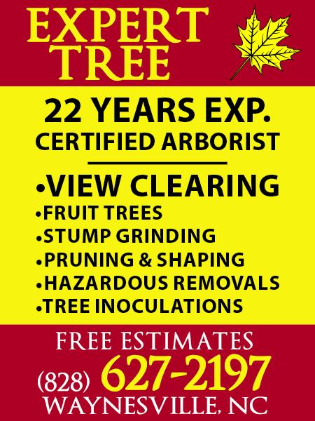 Expert Tree (Rev 9/9/19)