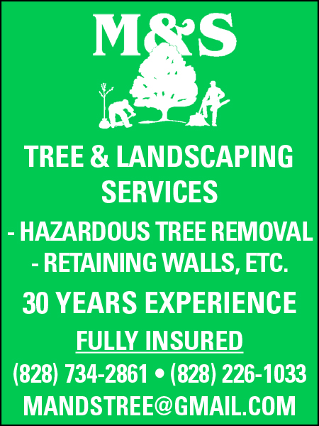 M&S Tree & Landscaping