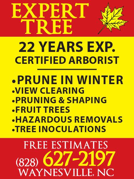 Expert Tree (12/3/19)