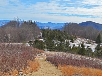 Winter view of Purchase Knob