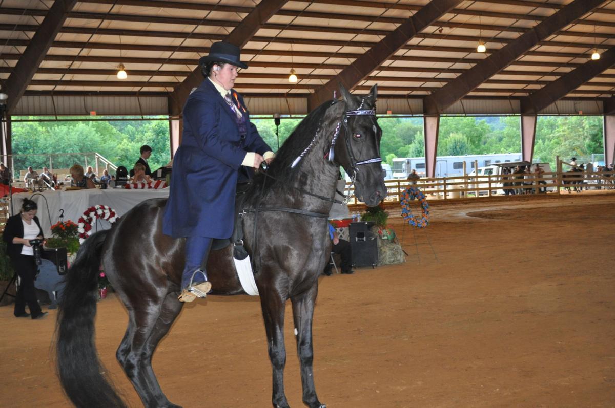 Horse show 2.JPG