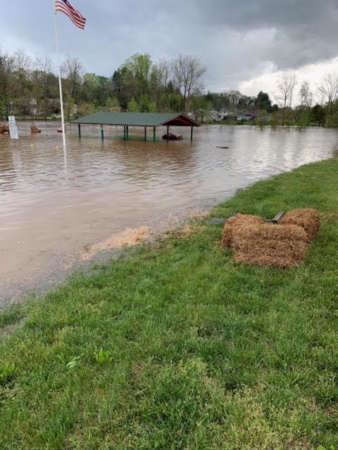 Flooded park.jpg