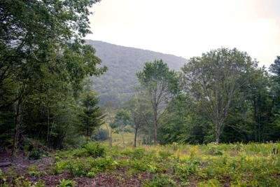 WHS Game Lands Property View