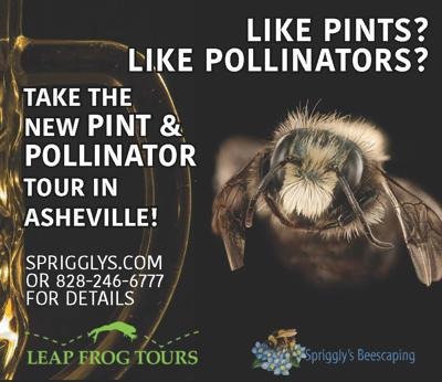 pollinaters and pints