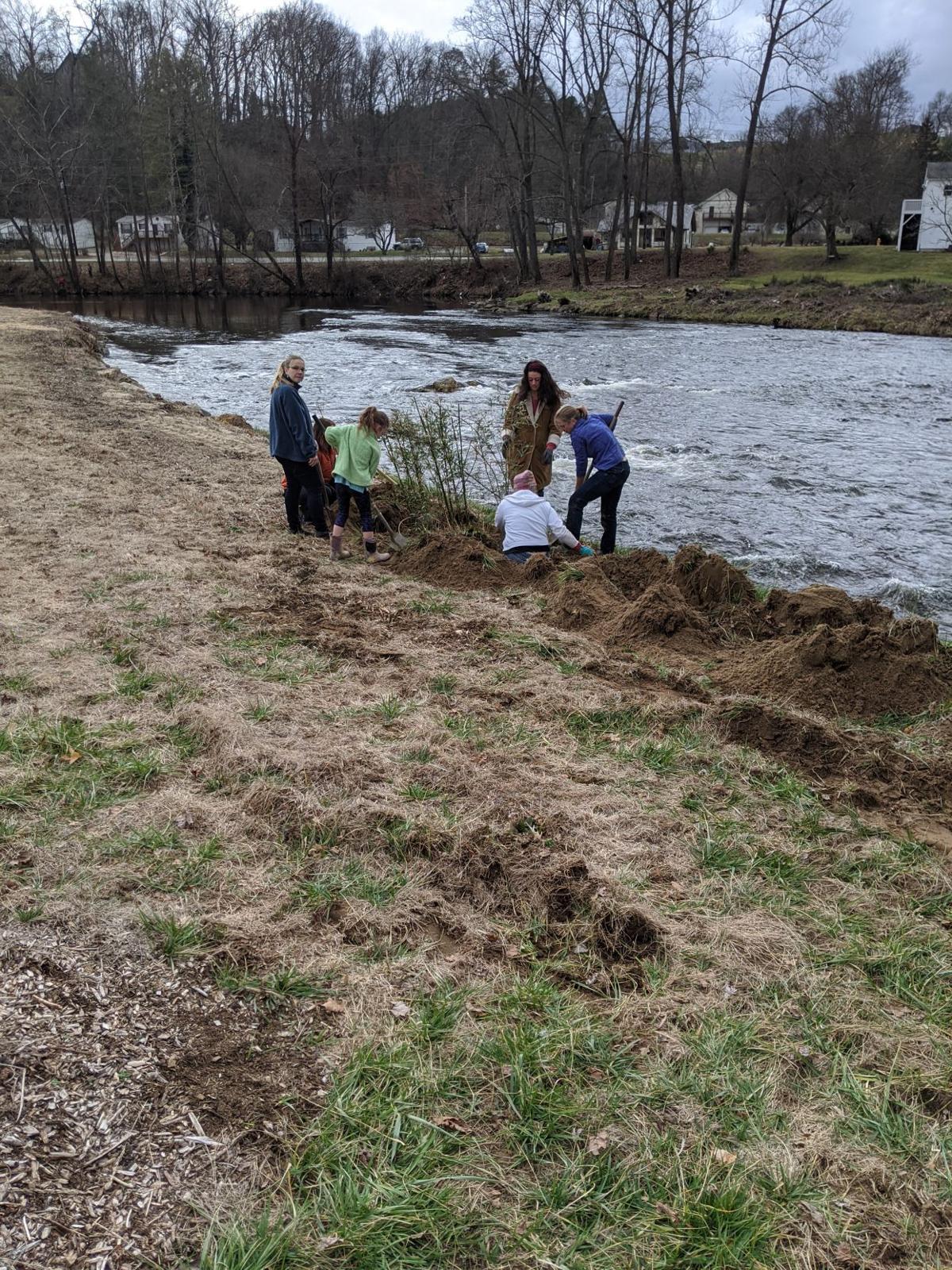 river cane planting 4.jpg