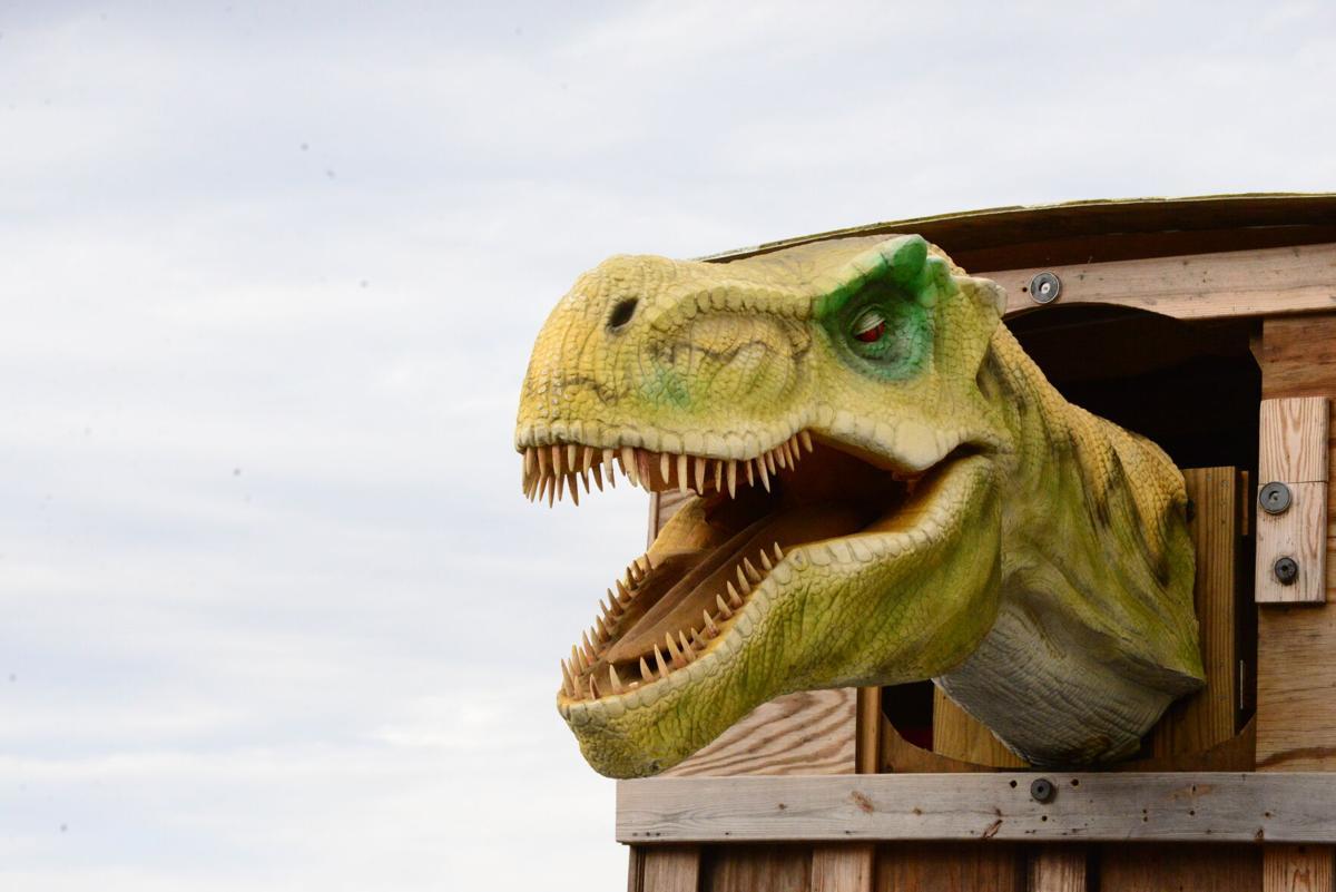 dinosaur trex.JPG