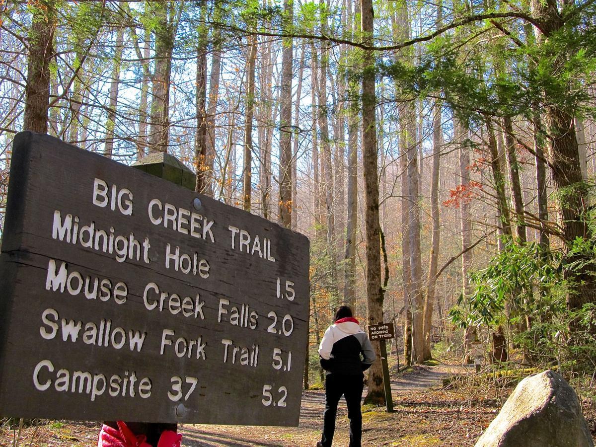 Big Creek hike
