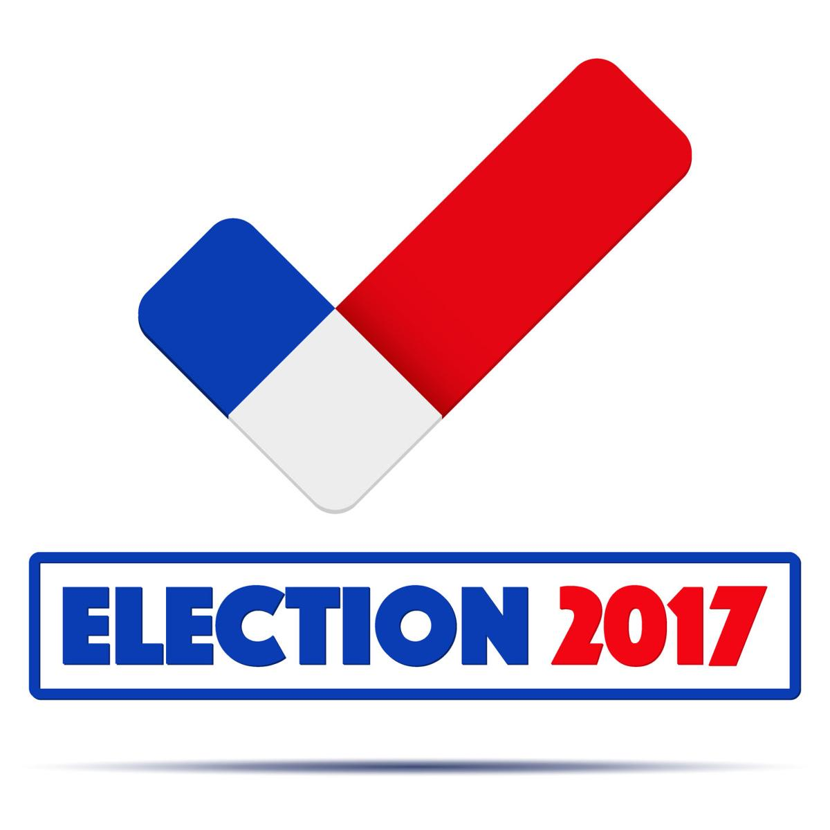 Study one vote can turn an election in north carolina state symbol of election 2017 in france check mark symbol in the form of french flag politics illustration isolated on white background buycottarizona
