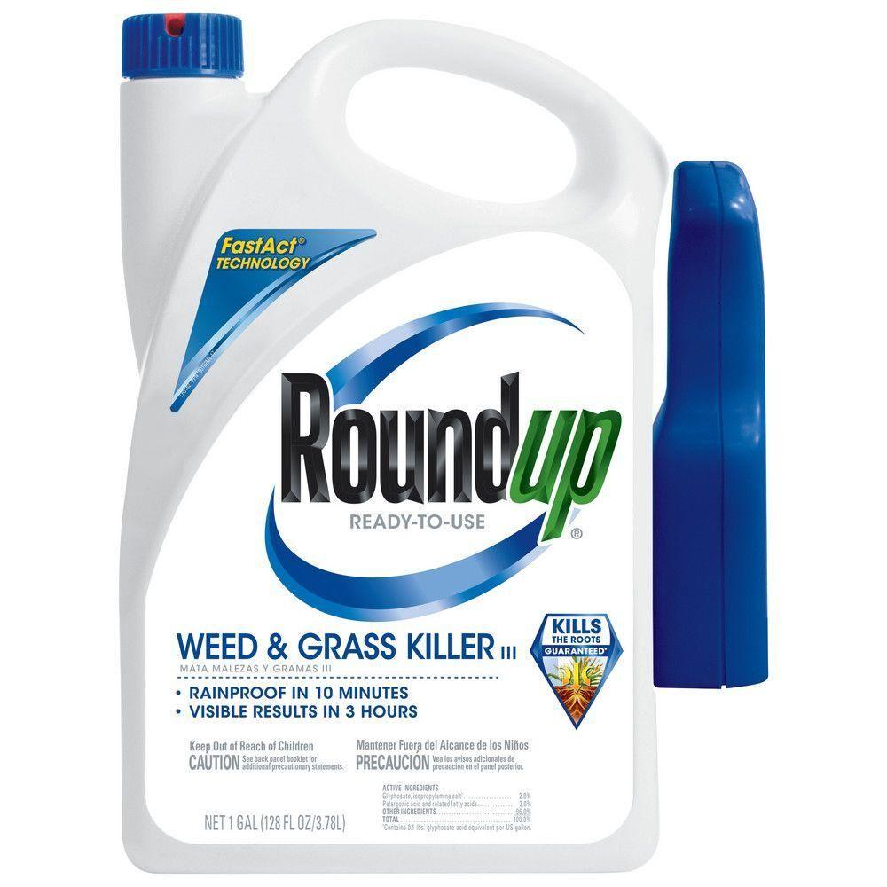 roundup-weed-grass-killer-500261005-64_1000.jpg