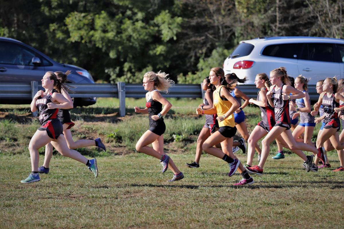 Pisgah Bears, Franklin Panthers and Tuscola Mountaineers are off to a good start .JPG