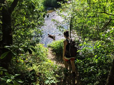 hike 2.jpg