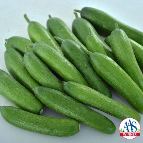AAS 2020 Cucumber