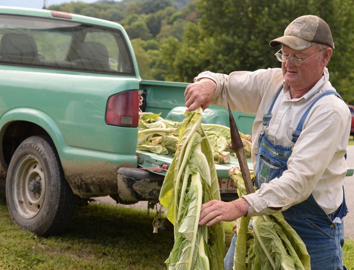 tobacco farmer don smart.JPG