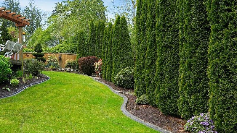 Six principles of landscape design | Opinion | themountaineer.com