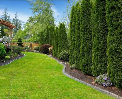 Beatiful backyard landscape