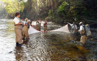 Creek11.JPG