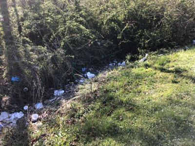 Haywood Waterways Allens Creek (Before).jpg