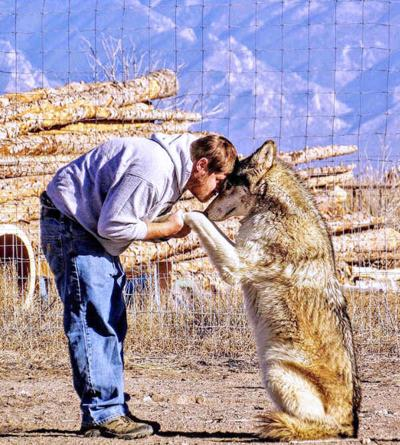 ARC sets up animal rescue in San Luis Valley | Free Content