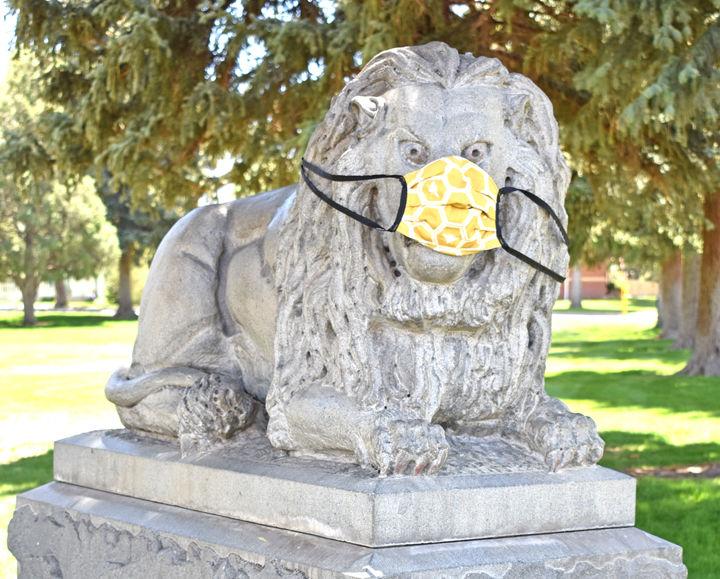 Lion masked
