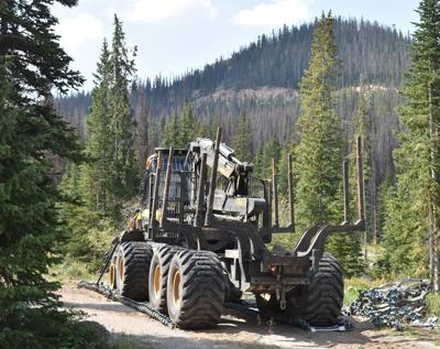 Monarch Pass project addresses beetle-kill trees on steep slopes