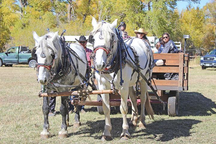 Arkansas Valley Trail Rides