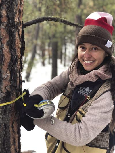 Colorado State Forest Service hires new forester in Salida