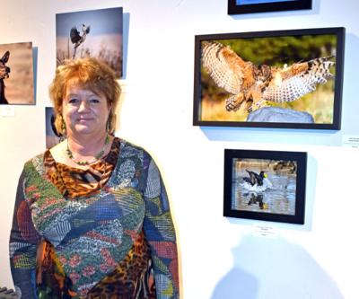 Wildlife photographer Kathy Davidoff