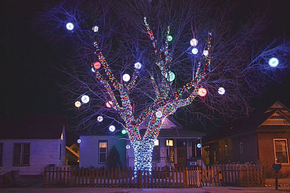 glowing orbs made from clear plastic cups hang from the large tree in rafe quintons front yard at 708 f st