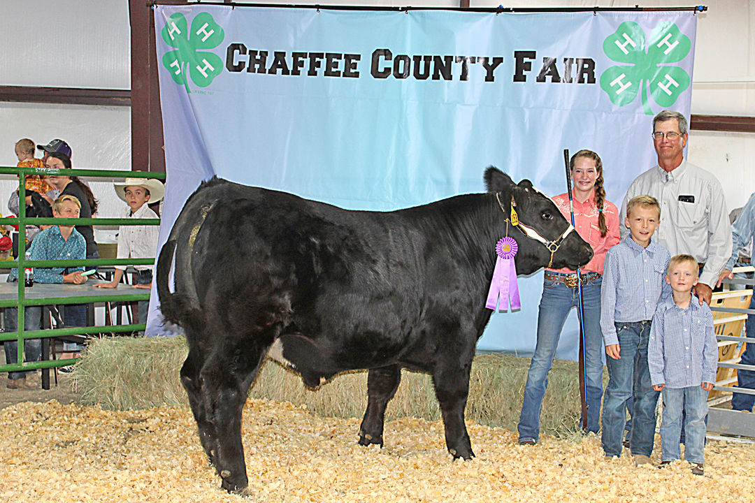 Kylee Davis and her grand champion beef