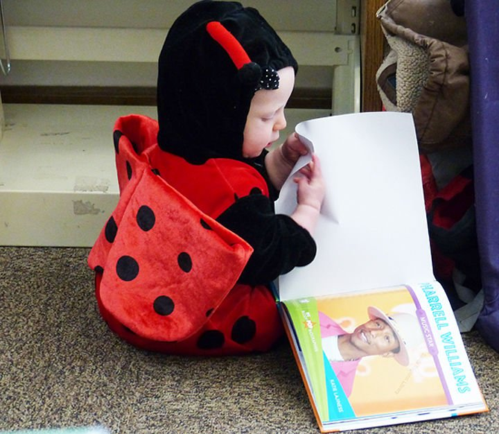 Ladybug in the library