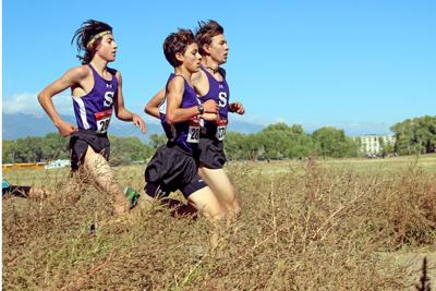 Cross country to run this fall