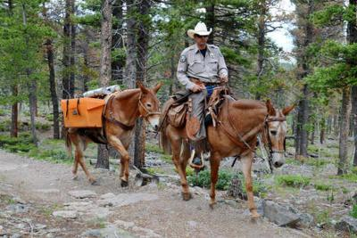 Justin Krall sits on his mule, Speedy, as Jenny follows