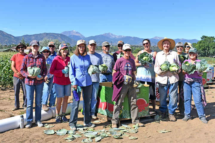 Volunteers at Colorado Farm to Table