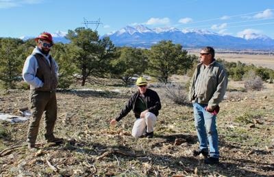 Mitigation efforts catch on