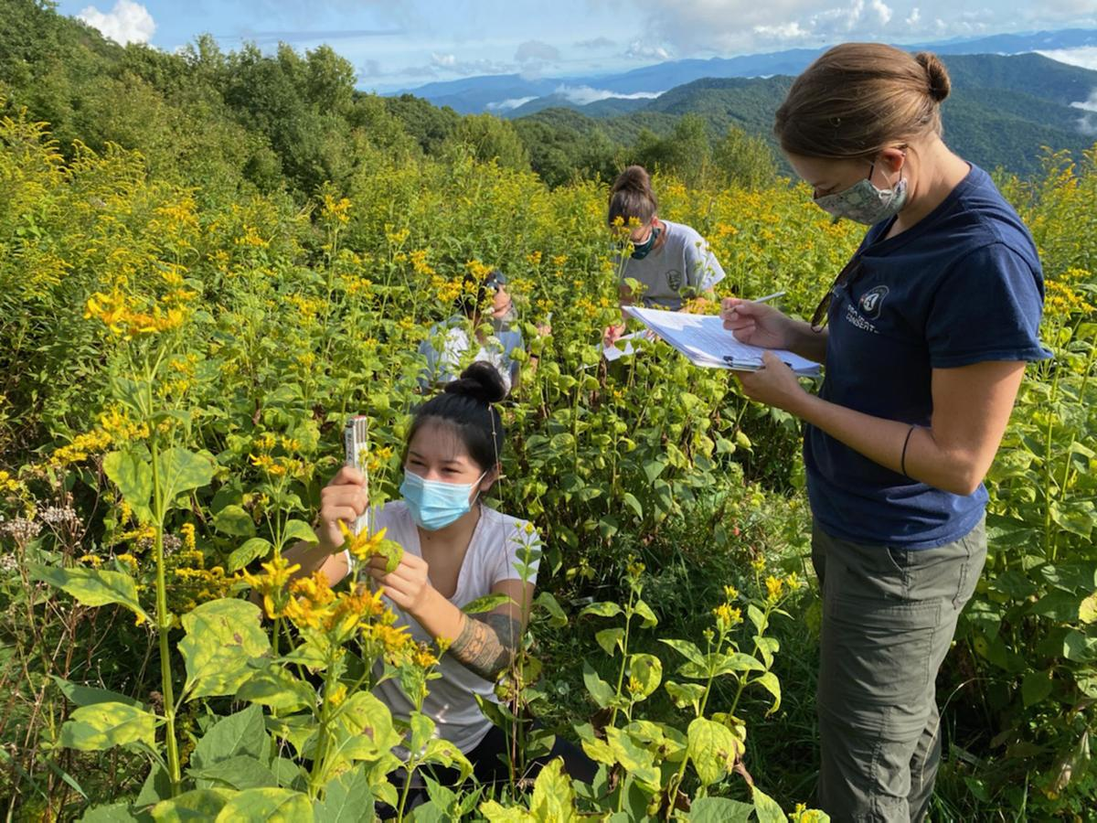 NPS Staff and AmeriCorp members record phenology observations.jpg