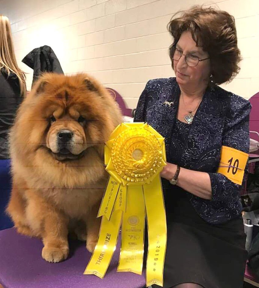 Dog from Hodgenville scores big at Westminster