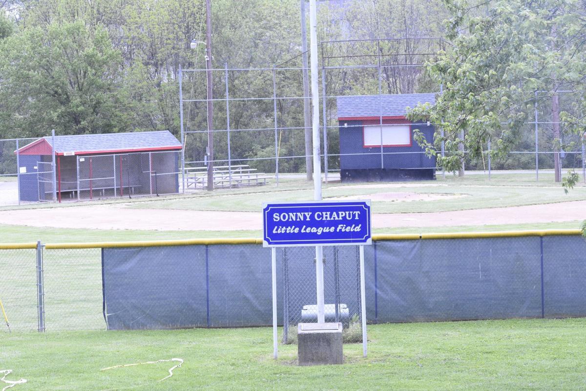 YOUTH SPORTS: Area baseball, softball leagues prepare for June start