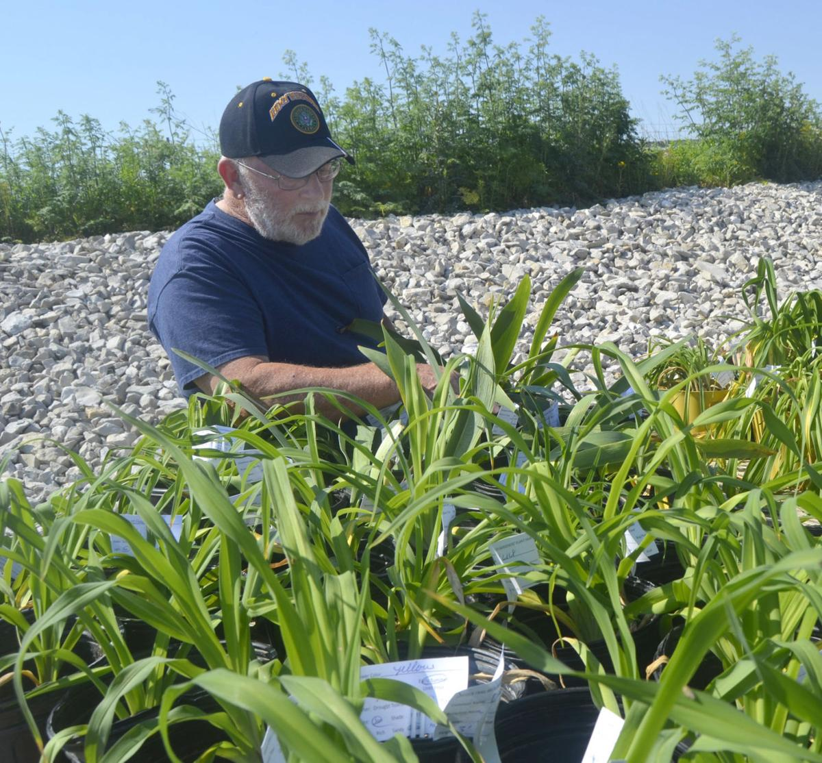Variety attracts gardening enthusiasts to annual plant fair