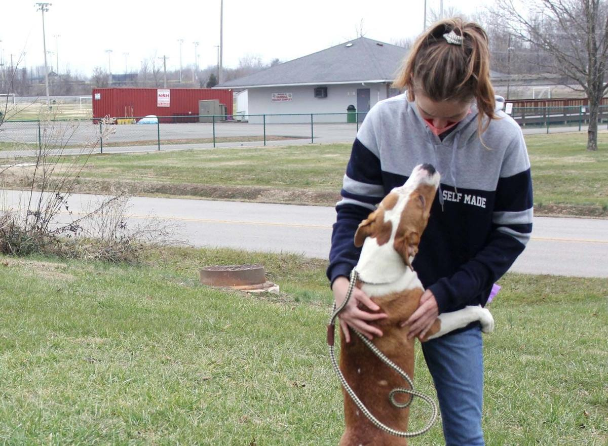 Animal shelter director touts services amid COVID-19