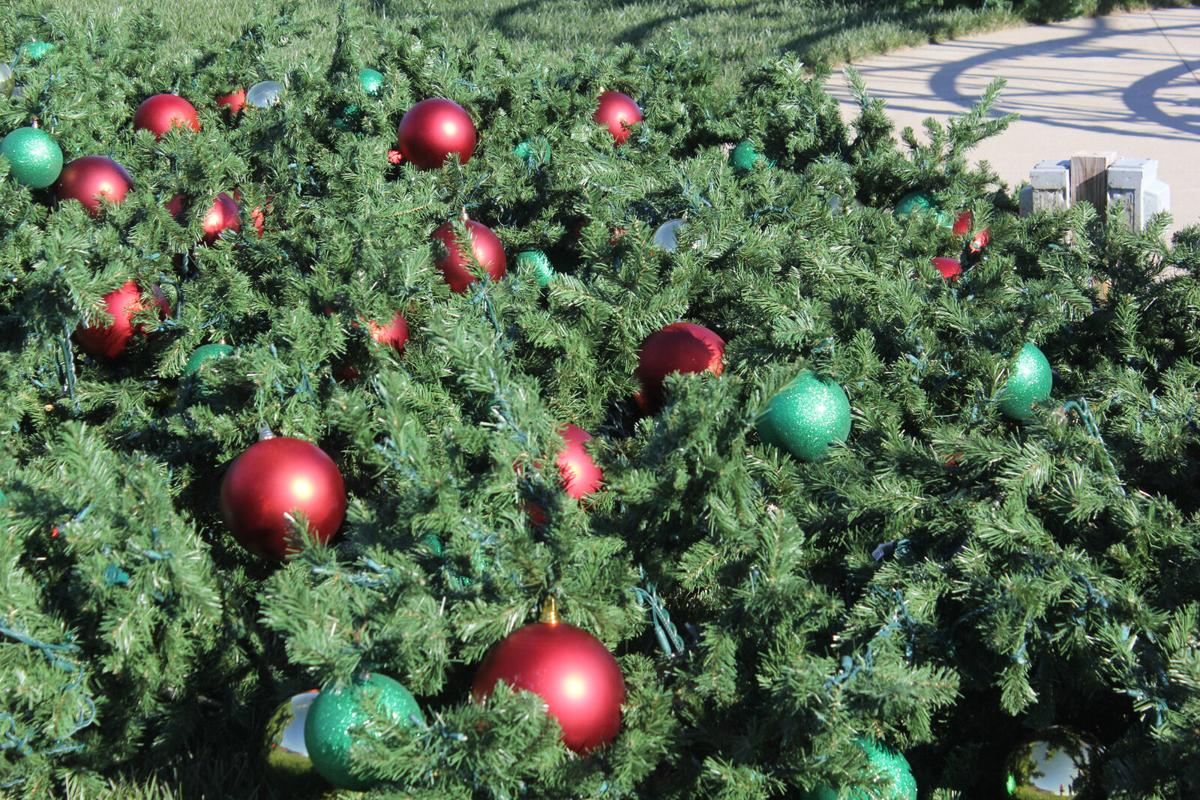 Severns Valley puts up 42-foot artificial tree