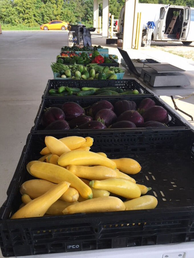 Farmers' Market Week encourages local support