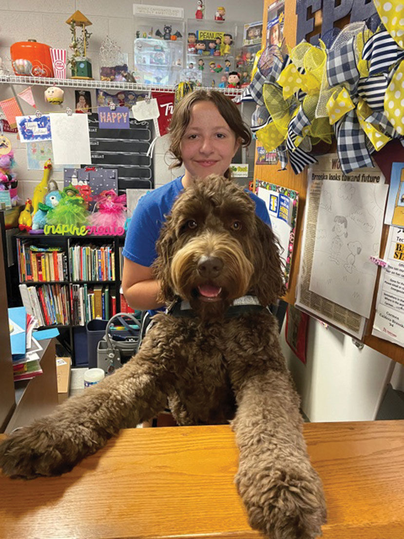 Therapy dogs bring comfort to students, staff