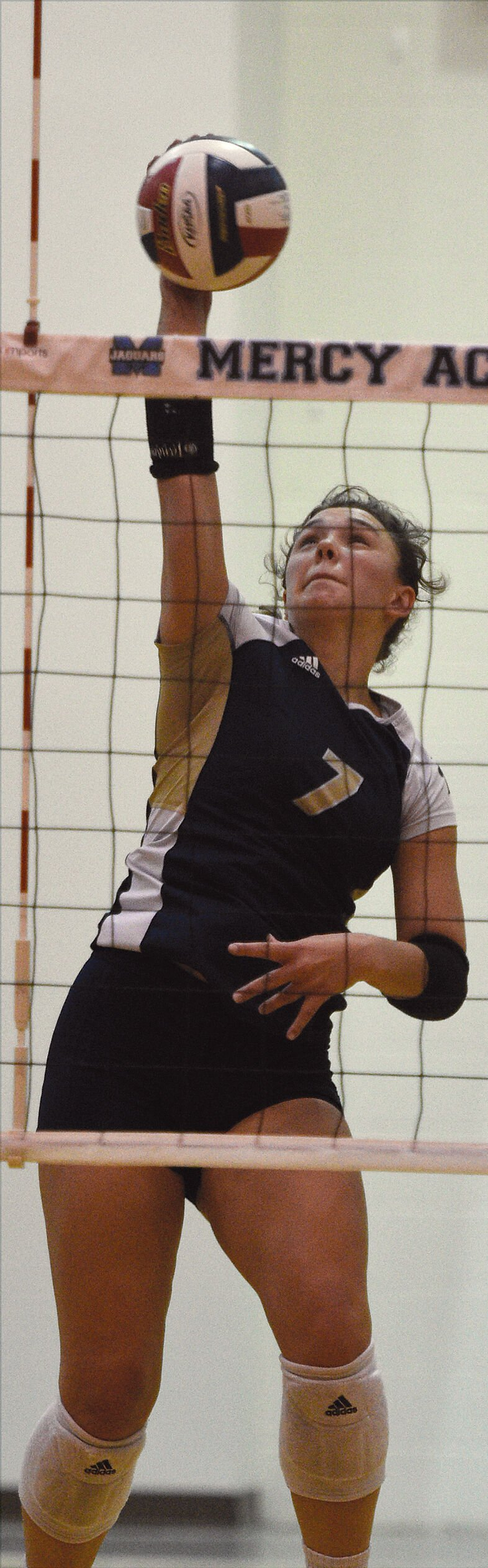 ALL-AREA VOLLEYBALL: E'town sweeps individual honors