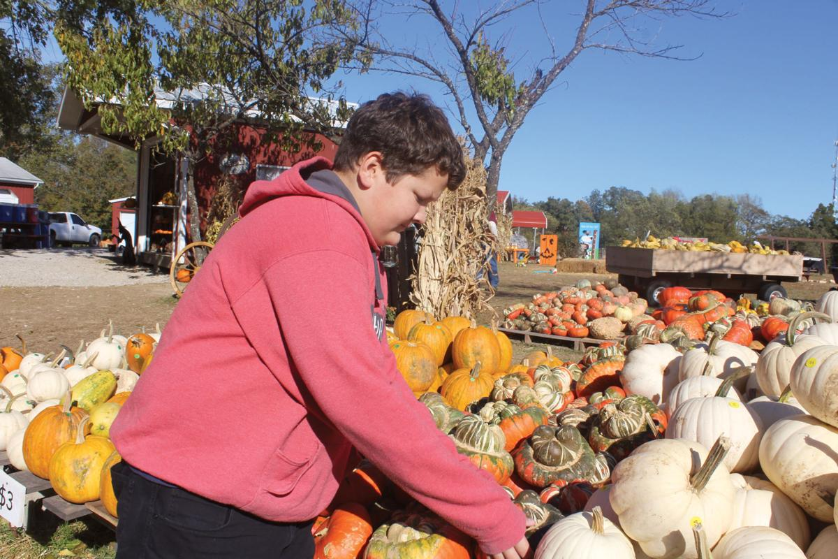 Teen lends pumpkin expertise to family business