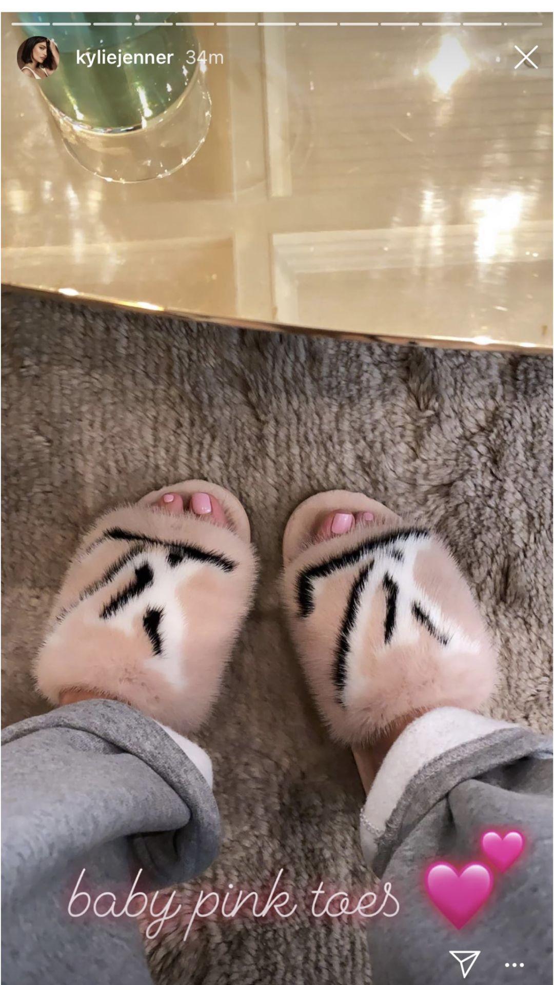 Kylie Jenner Mink Slippers