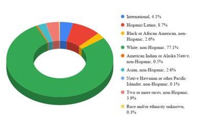 student demographics chart