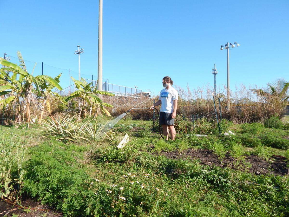Colby Stratman in garden