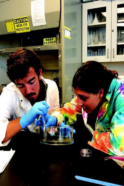 student scientists