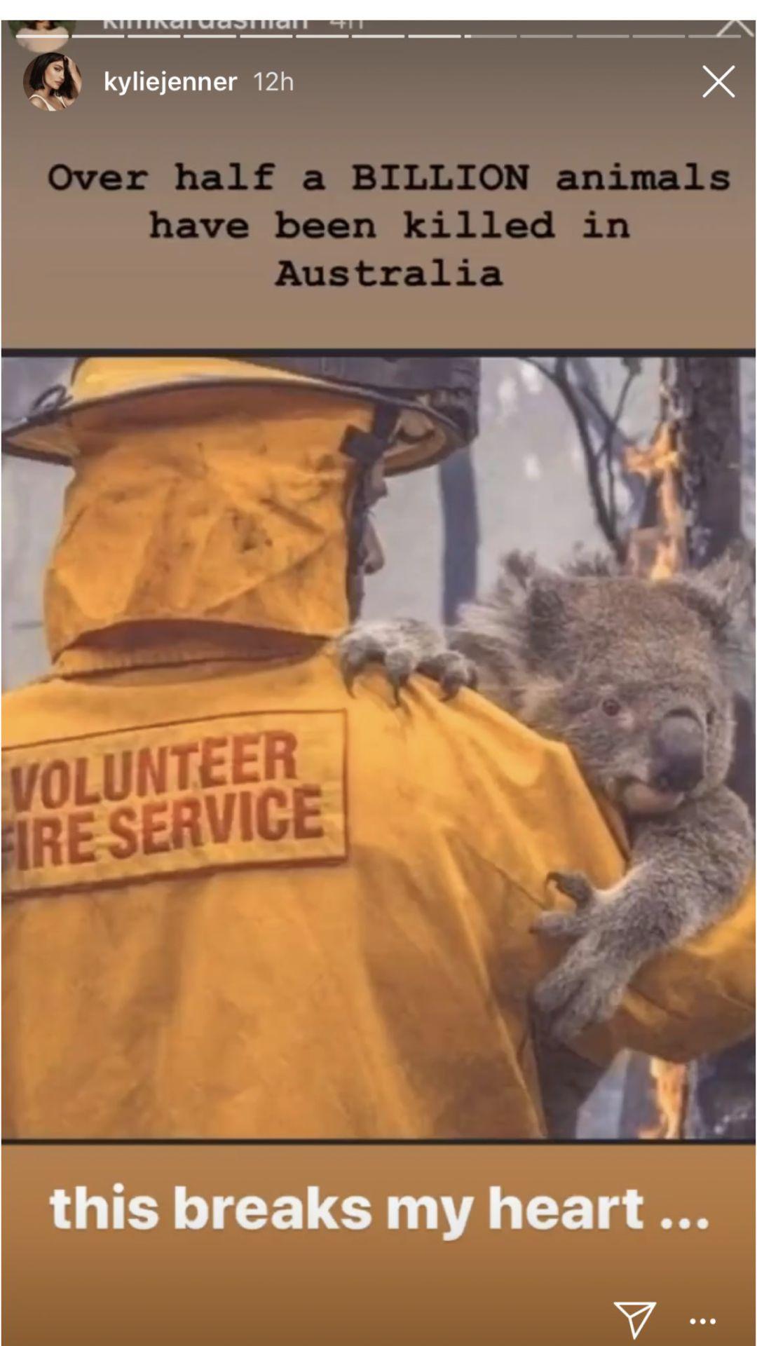 Kylie Jenner Koala