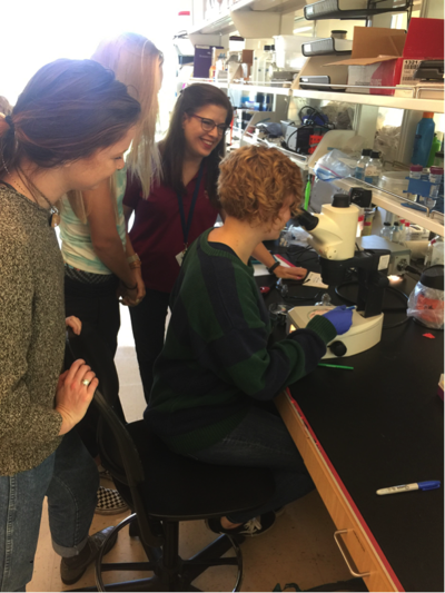 Professor Flaherty, students doing research in James Center